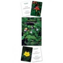 Les Cartes de l'Energie des fleurs d'Alaska