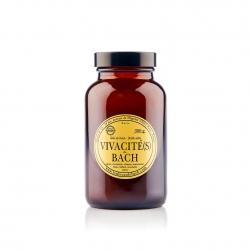Vivacité(s) de Bach - Sels...