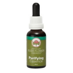 Purifying  -  Purification
