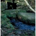 Eau de roche (Rock Water) - Intolérance