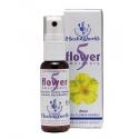 """Spray """"5 fleurs"""" (5 Flower spray)"""