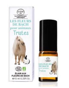 Les Fleurs De Bach Pour Animaux Blog Conseil En Fleurs De Bach